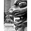 chinese lion mono statue detailsfriday