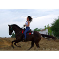Horseback Riding Rider Norelle Outdoors Trail Field Pankey Wildspirit Horse