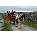 Aran Islands horse and trap transport