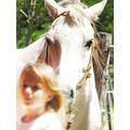 child chica caballo horse retrato portrait gente people animals animales