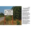 The Lao Industrial Tree Plantation Project