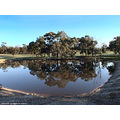 reflectionthursday fisheye drinking water fighting fires perth hills littleollie