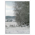 winter landscape fence field forrest snow sweden