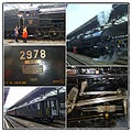 trainfriday funfriday collage