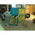 new kitten play center