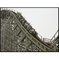 wooden roller coasters are good for whiplash