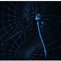 surreal artistic nude series light dark blue spider web abstract woman keitology