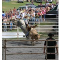 Dutchess Cty Fair's 1st Bull Riding Contest