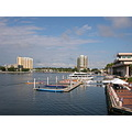 breast cancer dragonboat dock Florida