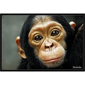 primate bonobos chimp wildlife nature