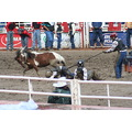 The wild pony comp. Basically they get three boys and give them a pony on the end of the rope. th...