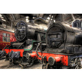 'At Rest': Steam locomotives in the Barrow Hill Roundhouse near Staveley in Derbyshire.