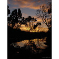 reflectionthrusday sunrise recent rain welcome perth hills littleollie