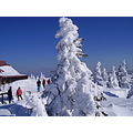Giant Mountains CzechRepublic Snow Mountain Winter Ski