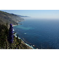 seascapes Hwy1 California roncarlin