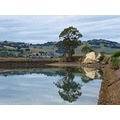 reflectionthursday Otago Harbour littleollie