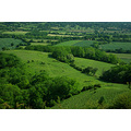 green fields trees country countryside nature hampshire england butser hill
