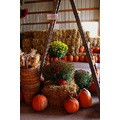 another display at the pumpkin patch