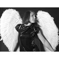 angel wings smile mono bw model girl