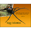 hallowsevefriday funfriday spider