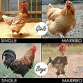single married