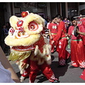 chinese newyear ftcomprat liondance lion dance costume liondancing