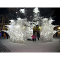 cityhall christmastree lights entrance white
