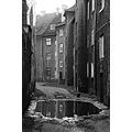 blackwhite scenery cat tenements november Silesia