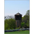 nature green grass wood tower sky ultrazoom