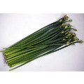 Garlic Chives with Unopened Flower Bud.    韭菜花