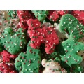 Holiday Circus Animal Cookies