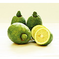 lemon big green yellow