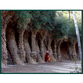 Park Guell the surrounding wall. This musician's songs reverberated under the walk. It was beauti...