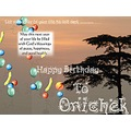 Happy Birthday To You Onichek ..............................