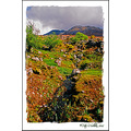 Glencar Mountain Stream Kerry Ireland Peter_OSullivan
