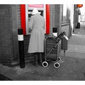 Dog Red Colour splash Post Office Basket Trolley Lady