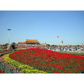 china beijing peking tiananmen flowers