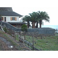2008 portugal madeira saojorge calhau ducks sea horizon house palms