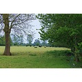 A shot of  my local country side taken at Dedham in Essex
