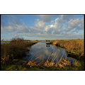 frisian winter landscape friesland holland