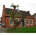 The Mulberry Tree at King's School, Worcester has had a haircut. I hope it grows enough to bear f...