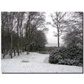 netherlands holten garden snow winter neths holtx snowx wintx