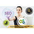 Experienced SEO Services Providers at LOWD Media