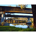reflectionthursday bridge wooden road rail split river perth littleollie