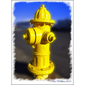 Hydrant Yellow Astoria Oregan USA