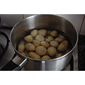 I grew these potatoes in an old bin someone chucked out at the rubbish skips.....See it made a go...