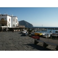 Ischia  : the harbor