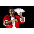 Magician Dove Fashion Show Entertainment Event Mauritius Mayzi