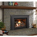 Fireplace Inserts Gas Fireplace Inserts Wood fireplace inserts