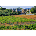 Temecula CA Wineries Architecture